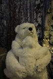 北极熊冬天场面 免版税库存照片