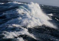 北极风大浪急的海面 库存照片