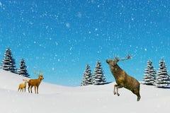 北极风景场面,落在雪原的驯鹿的雪在冬天季节和圣诞节 免版税库存图片