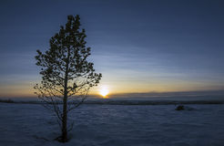 北极风景 库存图片