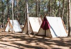 北欧海盗宫殿`北欧海盗村庄`阵营的在本Shemen附近的森林里在以色列 免版税图库摄影