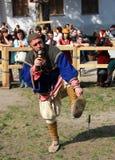 北欧海盗 库存照片