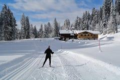 北欧滑雪在Kaisergebirge,提洛尔,奥地利 图库摄影