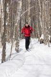 北欧滑雪者 免版税库存照片