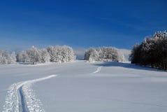 北欧滑雪足迹 库存照片