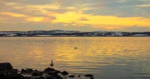 北海的海湾 免版税图库摄影