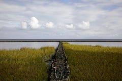 北海的盐沼 图库摄影