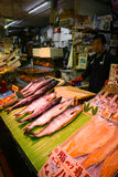 北海道三文鱼 库存照片
