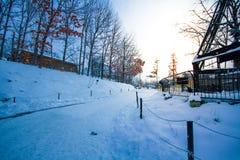 北海道动物园冬天风景  库存照片