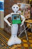 北海道,日本- 2017年10月18日:软库集团` s胡椒机器人 库存图片