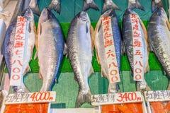 北海道,日本2016年6月10日 鲜鱼在函馆早晨 免版税图库摄影