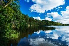 北湖在森林里 免版税库存图片