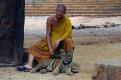 北碧,泰国- 2015年1月10日:在老虎寺庙的老虎 免版税库存照片