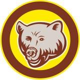 北美灰熊减速火箭头的圈子 向量例证