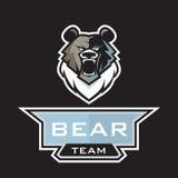 北美灰熊商标 向量例证