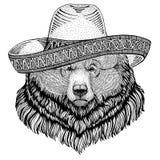 北美灰熊大狂放的熊野生动物佩带的阔边帽墨西哥节日墨西哥党例证狂放的西部 免版税库存照片