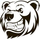 北美灰熊的头 皇族释放例证