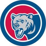 北美灰熊头减速火箭边的圈子 向量例证