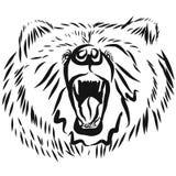 北美灰熊头,抚养恼怒的姿势 库存例证