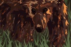 北美灰熊 库存例证