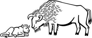 北美野牛和小牛 库存例证