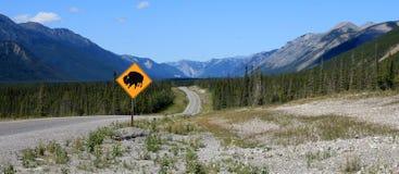 北美野牛横穿标志 库存照片