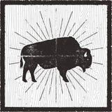 北美野牛象剪影 减速火箭的活版作用 与在减速火箭的背景卡片隔绝的旭日形首饰的水牛城标志 使用 皇族释放例证