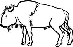 北美野牛 向量例证