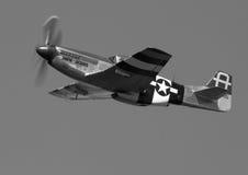 北美洲P-51D野马 免版税库存图片