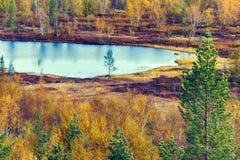 北自然好的看法在金黄秋天 免版税库存照片