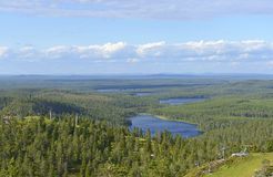 北芬兰 免版税库存图片