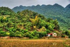 北越南的美好的风景 免版税库存图片