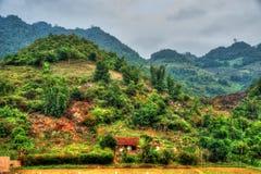 北越南的美好的风景 图库摄影