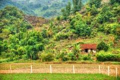 北越南的美好的风景 库存照片