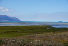 北部冰岛 免版税库存照片