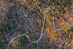 北部南卡罗来纳山麓小丘在黎明 免版税图库摄影