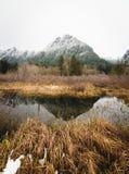 北部小瀑布国家公园极大不同的风景有很多 免版税库存图片