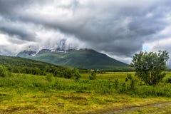 北部挪威自然 免版税库存图片