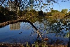 北部池塘 免版税图库摄影