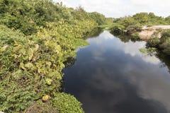 北部海岸线,北里约格朗德,巴西 库存图片