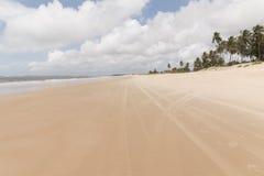 北部海岸线,北里约格朗德,巴西 库存照片