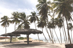 北部海岸线,北里约格朗德,巴西 免版税库存照片