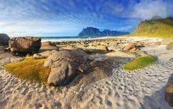 北部海滩挪威Uttakleiv 图库摄影