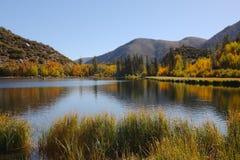 北部美丽的湖 免版税库存图片