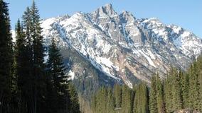 北部美国的山 图库摄影