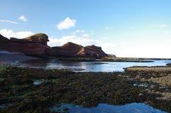 北部苏格兰峭壁 免版税库存照片