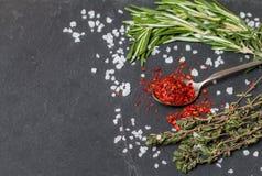 匙子用辣椒和草本在黑色 免版税图库摄影