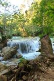 匡Si瀑布在老挝的密林 库存照片