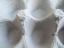 黑匣子鸡蛋查出六 免版税库存图片