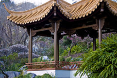区亚洲人庭院 免版税图库摄影